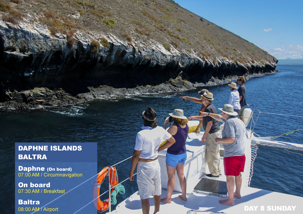 Nemo II Galapagos Cruises Itinerary North Eighth Day Sunday AM Daphne AM Baltra