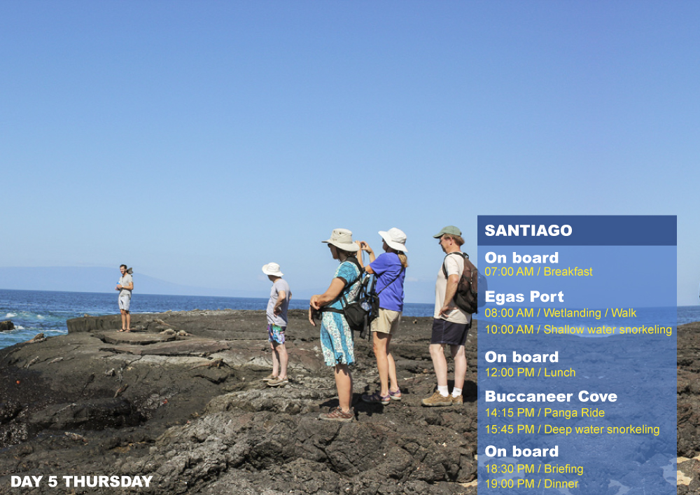 Nemo II Galapagos Cruises Itinerary North Fifth Day Thursday Santiago AM Egas Port PM Buccaneer Cove