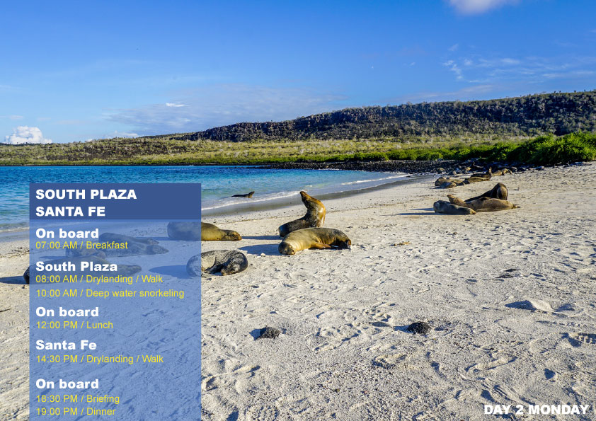 South Itinerary Days For Nemo II Galapagos Cruises - 5 day cruises