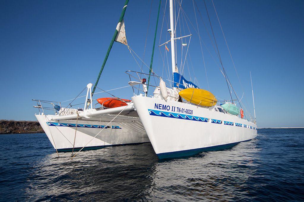 Gallery Nemo Ii Galapagos Cruises