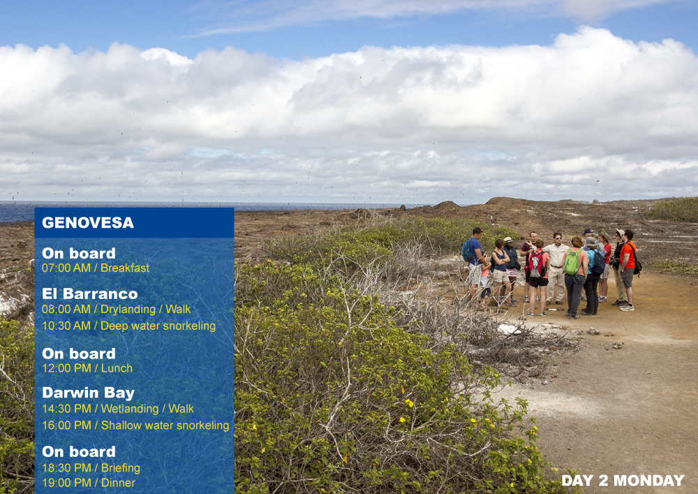 Nemo III Galapagos Cruises Itinerary North 4 Days - Second Day Monday Genovesa AM Prince Phillips Steps PM Darwin Bay