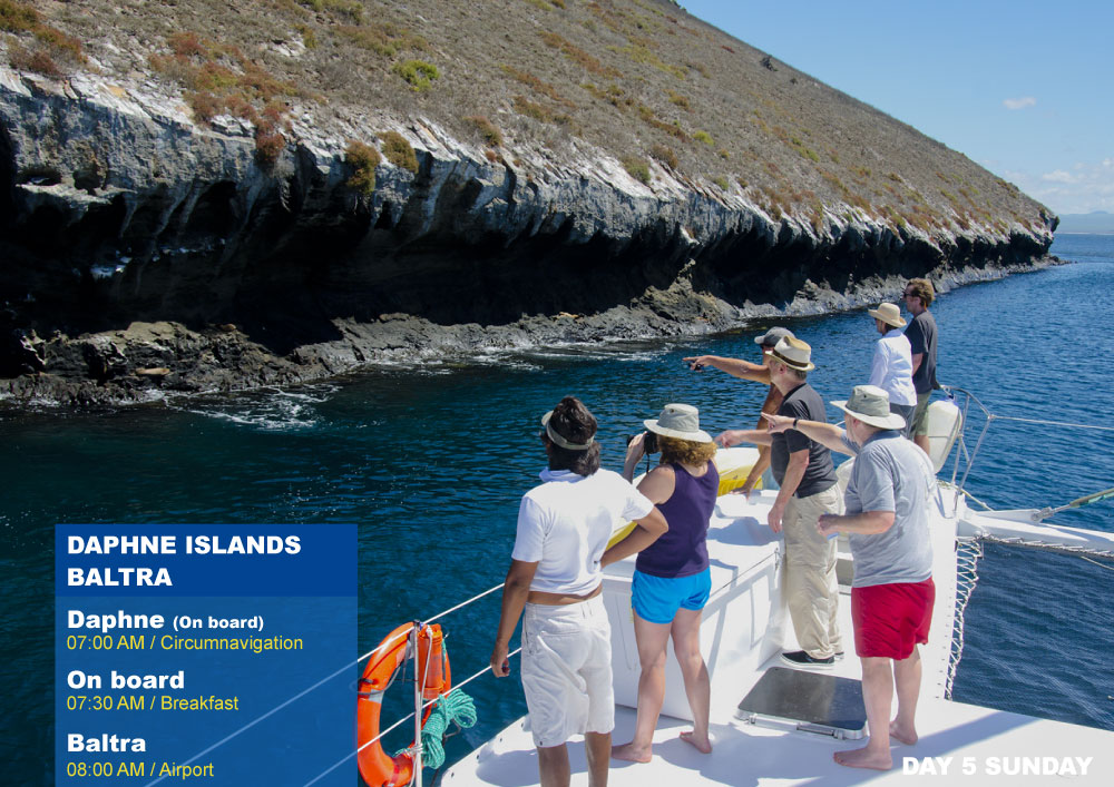Nemo III Galapagos Cruises Itinerary North 5 Days - Fifth Day Sunday AM Daphne AM Baltra