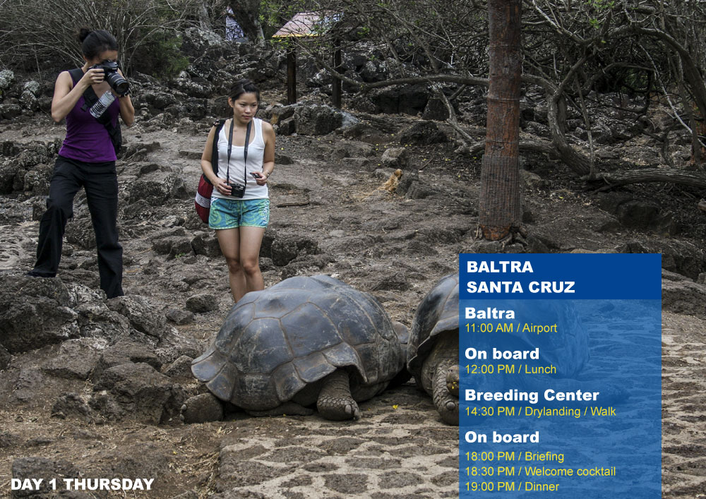 Nemo III Galapagos Cruises Itinerary South 5 Days - First Day Thursday Santa Cruz AM Highlands PM Breeding Center Fausto Llerena