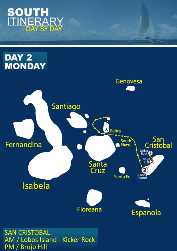 South Itinerary For Nemo Iii Galapagos Cruises