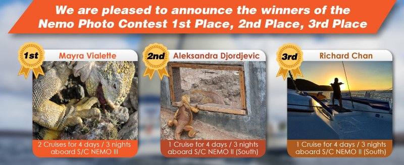 We are pleased to announce the winners of the Nemo Photo Contest
