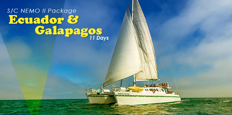 Ecuador & Galapagos Program 11 Days