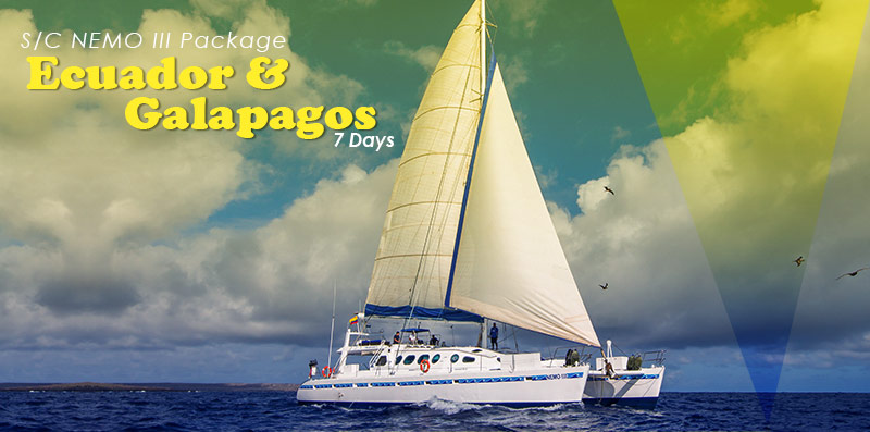 Ecuador & Galapagos Program 7 Days