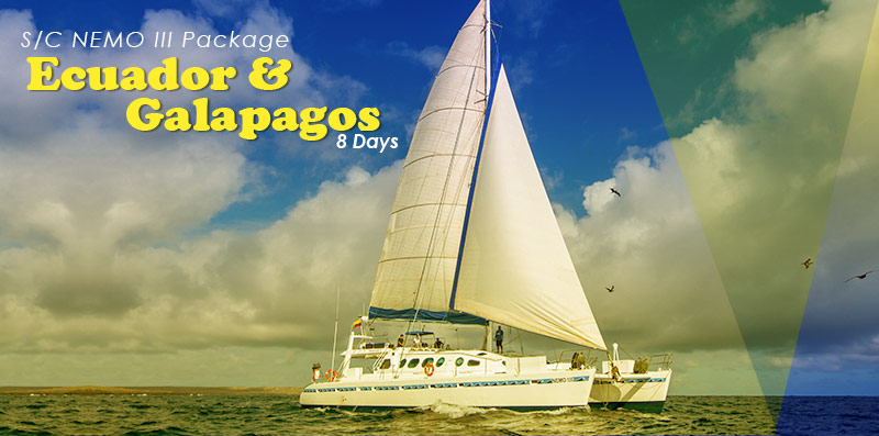 Ecuador & Galapagos Program 8 Days